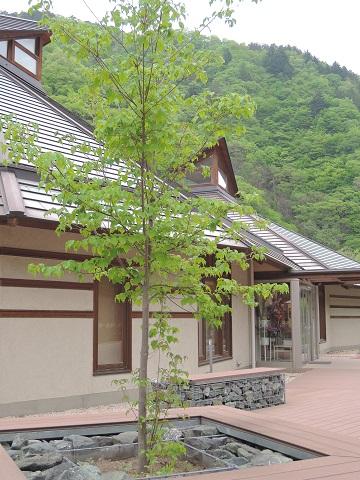 群馬県上野村へ^^_a0211886_0254164.jpg