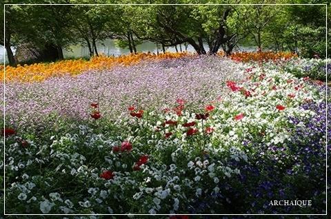 春過ぎて~_c0207890_14312582.jpg
