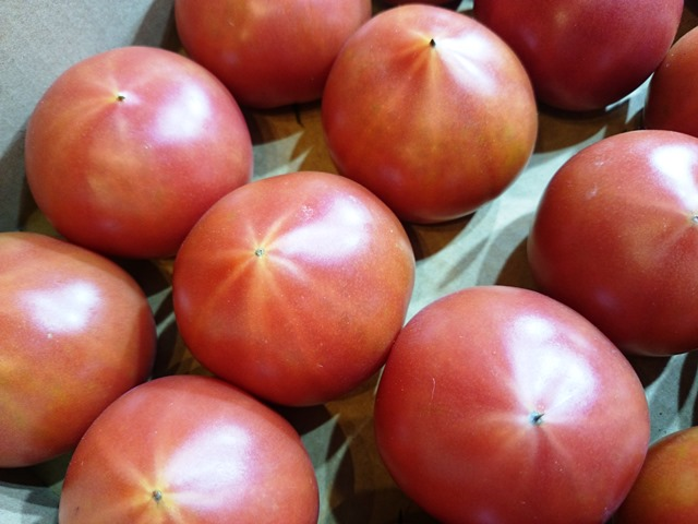 美味しいフルーツトマトの選び方_e0167593_1163089.jpg