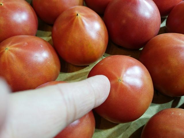 美味しいフルーツトマトの選び方_e0167593_118911.jpg