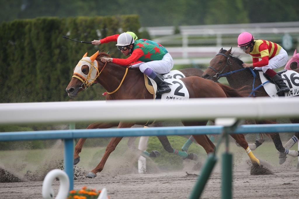 2015年5月3日 天皇賞・春(GⅠ)&ファンと騎手との集い_f0204898_8131862.jpg