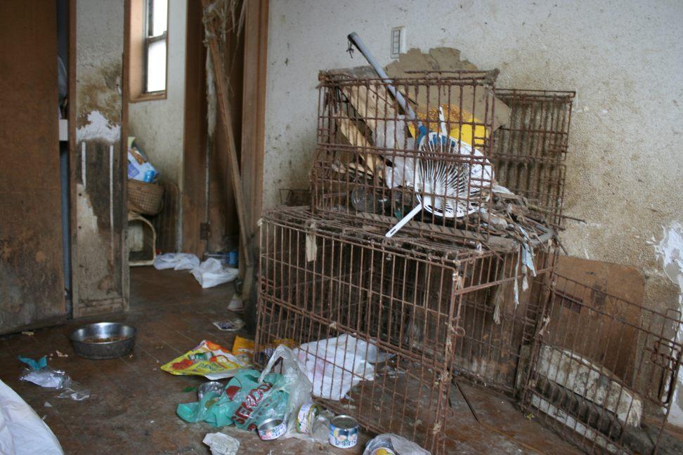 ゴミ屋敷20日がタイムリミットです_f0242002_8401698.jpg