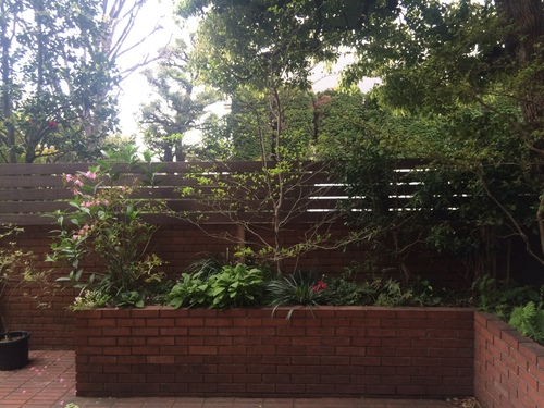 トトモニの庭_a0148909_1501176.jpg