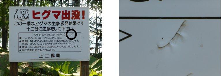 北海道編(54):タウシュベツ橋梁(13.9)_c0051620_17325660.jpg