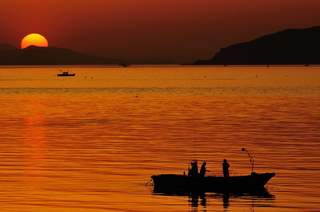 夕方の部:宇多津臨海公園②_f0346040_10260160.jpg
