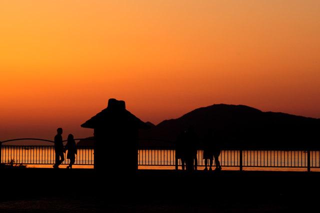 夕方の部:宇多津臨海公園②_f0346040_10365537.jpg