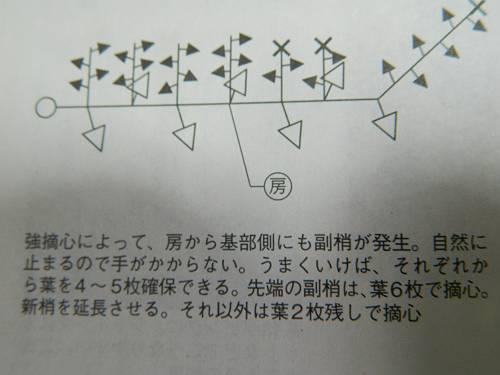 b0218444_17025980.jpg