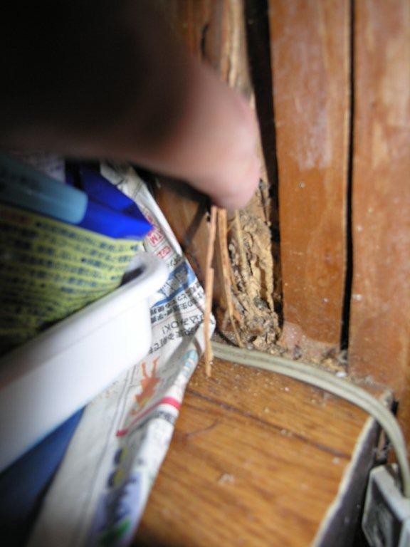 耐震診断 築40年の木造住宅_c0365045_06185542.jpg