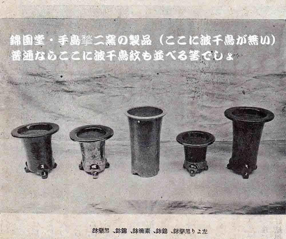 手島鉢の波千鳥紋の疑問                  No.1500_d0103457_00074022.jpg