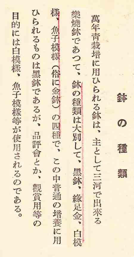 手島鉢の波千鳥紋の疑問                  No.1500_d0103457_00081240.jpg