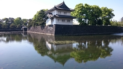 皇居東御苑に藤棚を見にいってきた!_c0100865_10331320.jpg