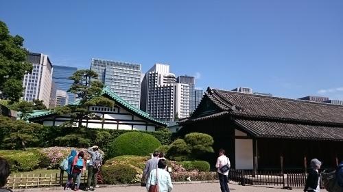 皇居東御苑に藤棚を見にいってきた!_c0100865_10335043.jpg