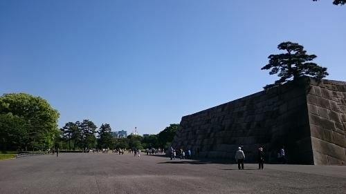 皇居東御苑に藤棚を見にいってきた!_c0100865_10445795.jpg
