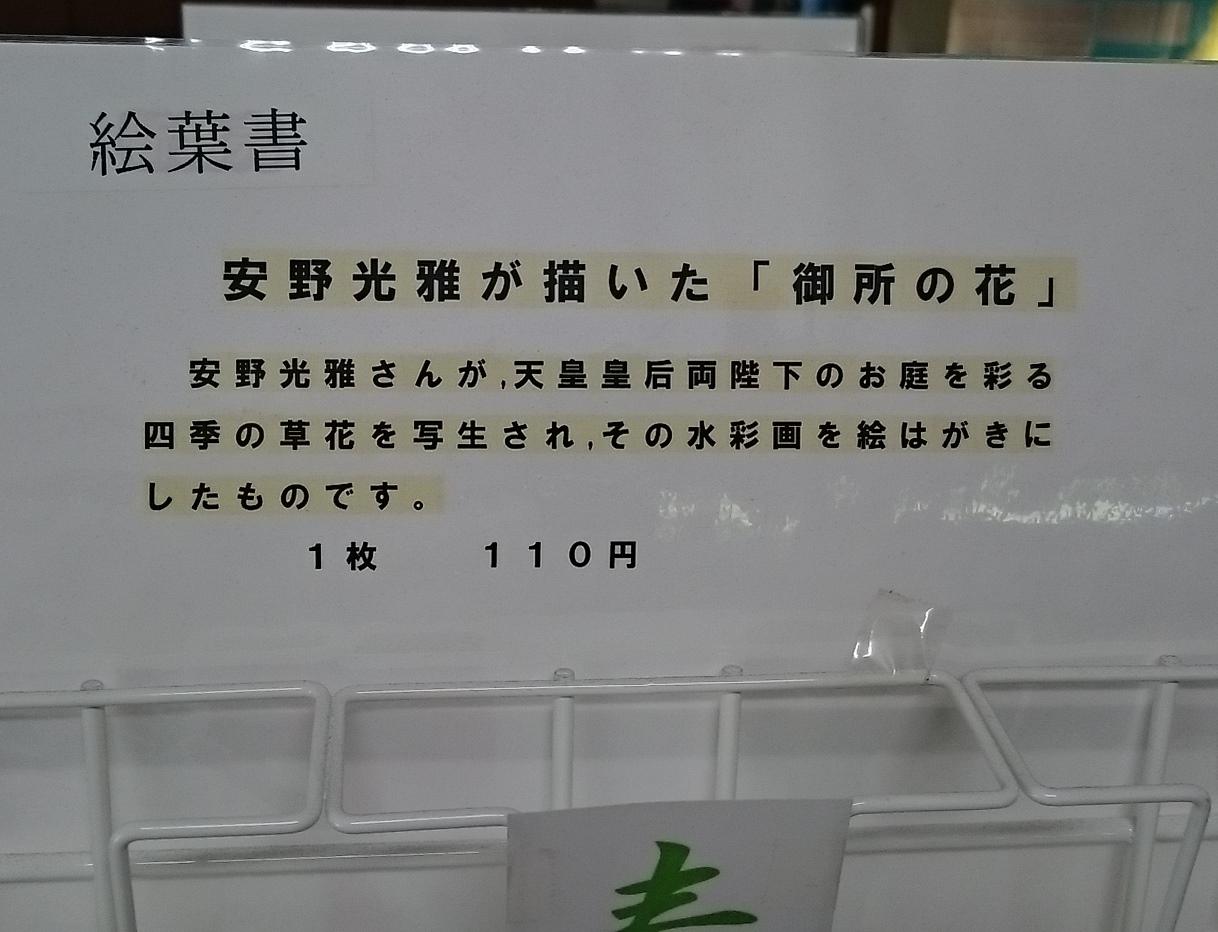 皇居東御苑に藤棚を見にいってきた!_c0100865_10490680.jpg
