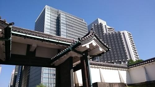 皇居東御苑に藤棚を見にいってきた!_c0100865_10494290.jpg