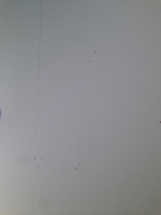 f0236691_18354152.jpg