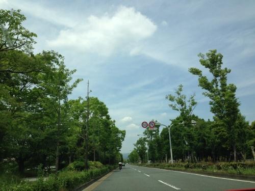 連休7日目ー京都旅行気分_f0347891_17295051.jpg