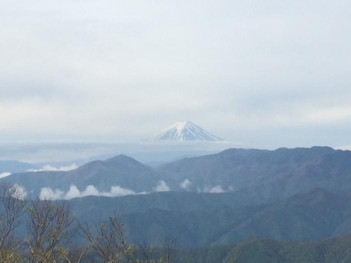 雲取山は遠かった 1_b0067012_8304844.jpg