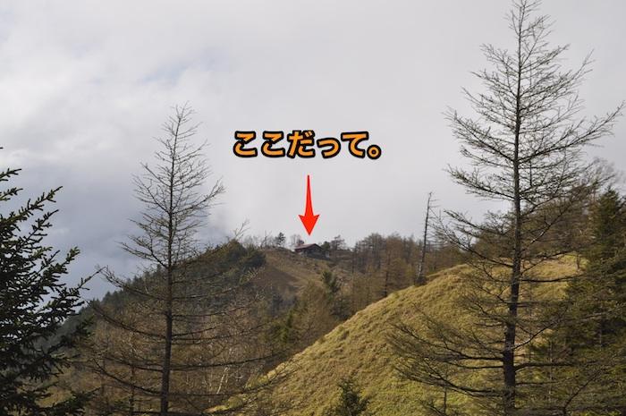 雲取山は遠かった 1_b0067012_8434770.jpg