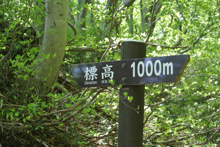 b0291016_20071224.jpg