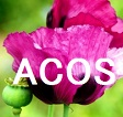 システマティックレビュー:ACOSはCOPDや気管支喘息の20%に存在する_e0156318_1221504.jpg
