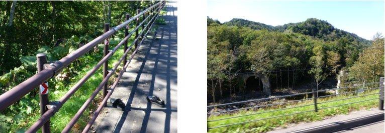 北海道編(55):旧士幌線アーチ橋ツァー(13.9)_c0051620_6231864.jpg