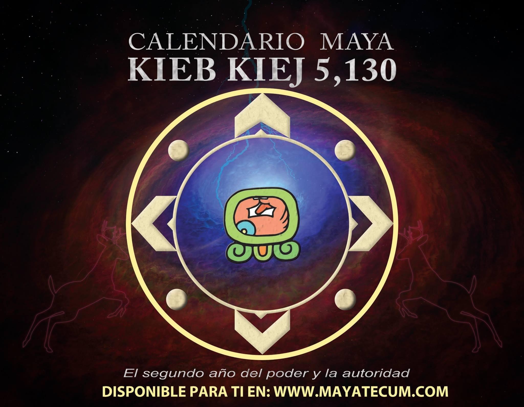 シカ13に訊く5月の運勢は?_b0213435_13510596.jpg