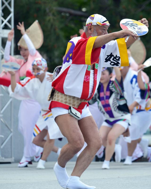 四国の祭り 2015 娯茶平 / 阿波踊り_d0246136_17570464.jpg
