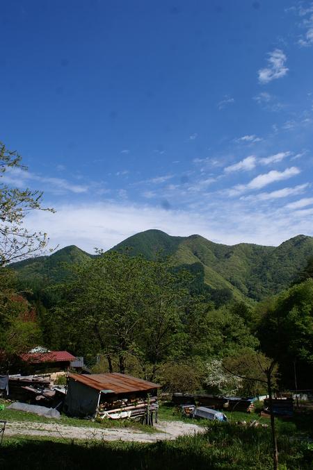 新緑の山に 帰る。_f0114346_934611.jpg