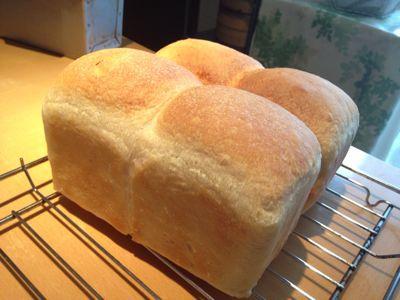 シンプルなパン2種類焼きました。_a0175348_8421939.jpg