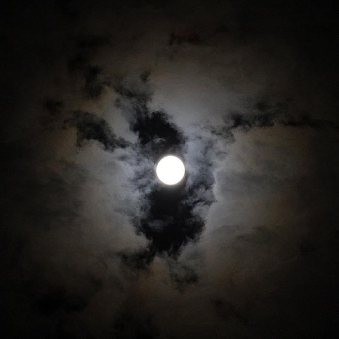 〇 2015.5.4 ∞ ウエサク祭の夜の蠍座満月 〇_c0069848_11513326.jpg