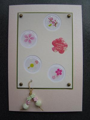 Spring has comeパート2~桜が散るまえに~_d0285885_14081278.jpg