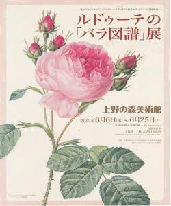 ルドゥーテの「バラ図譜」展+レポ新聞_d0285885_14114053.jpg