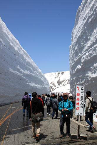 立山アルペンルート3 雪の大谷_e0048413_213044100.jpg
