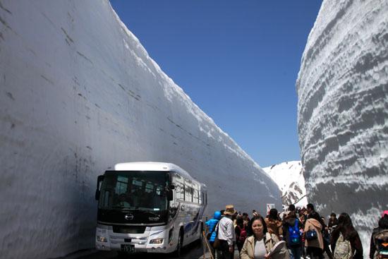 立山アルペンルート3 雪の大谷_e0048413_21312833.jpg