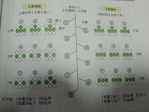 b0218444_18574343.jpg