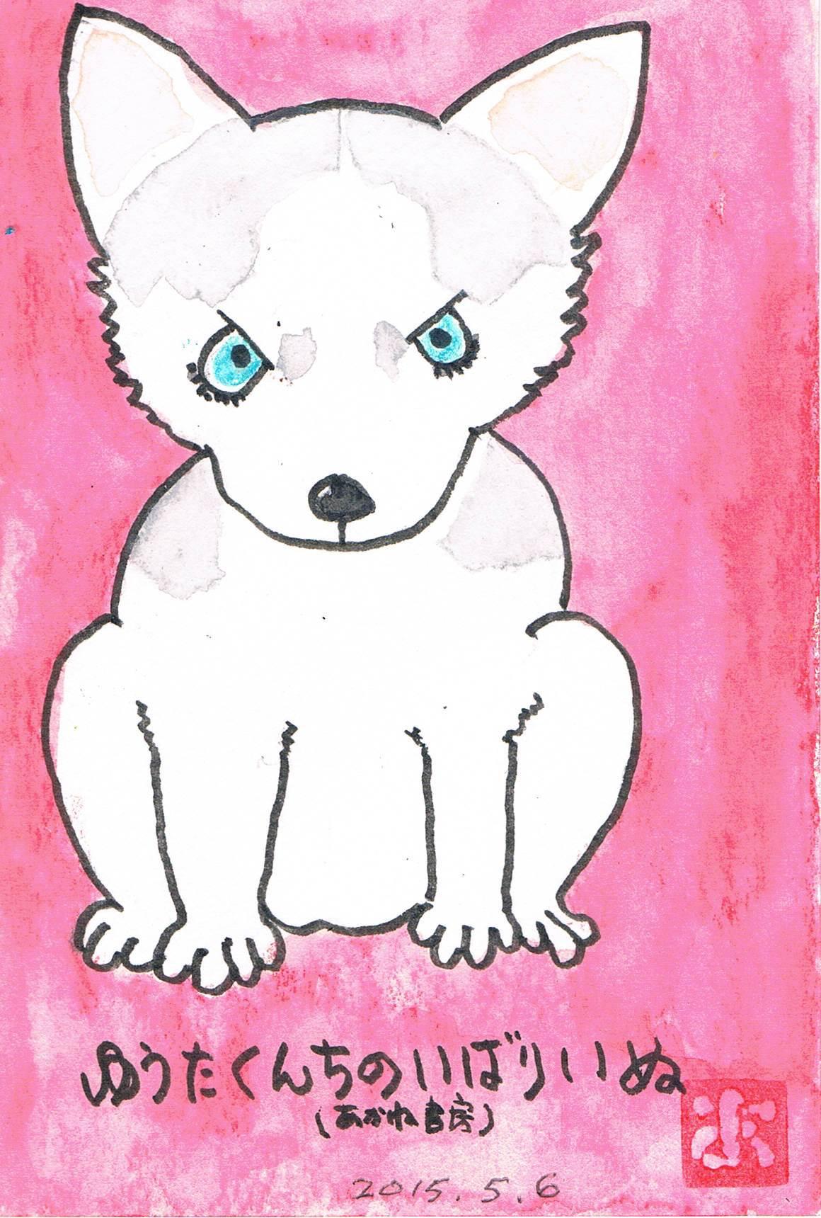小次郎という犬_e0232277_11183824.jpg