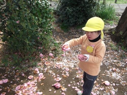 なんで…ピンクがいっぱい?_f0334882_13260099.jpg
