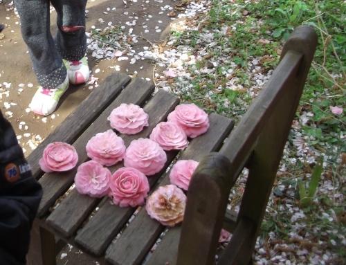なんで…ピンクがいっぱい?_f0334882_13275031.jpg