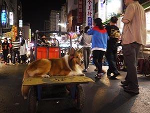 台湾旅行2_f0152544_1231388.jpg