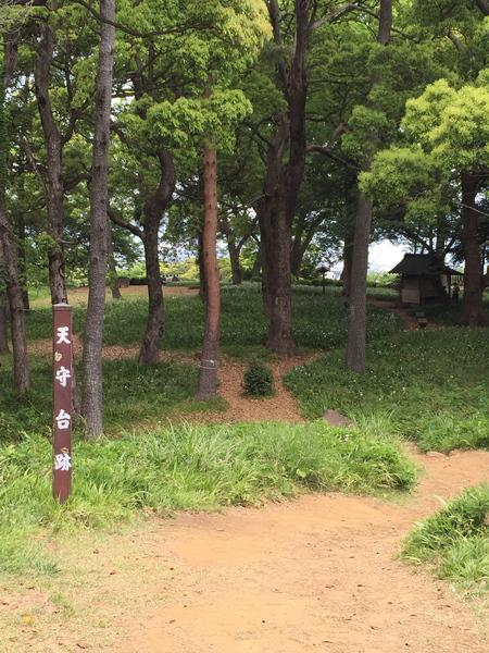 一夜城公園で小田原攻め^^_a0109467_1522838.jpg