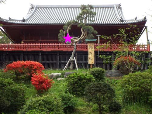 日本現代工芸美術展まで見たこと_f0211178_20534263.jpg