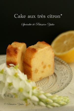 Pâtissière Yuka お菓子アルバム Ⅱ-② 「Tarte au citron」&「Cake au citron」_c0138180_21162116.jpg