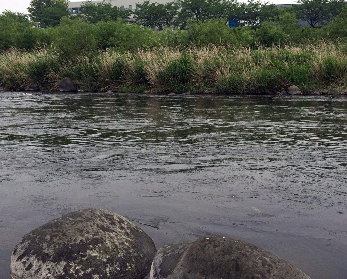 slow fishing_c0095801_18123559.jpg
