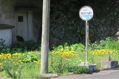 海界の村を歩く 東シナ海 池島(長崎県長崎市)_d0147406_22251054.jpg