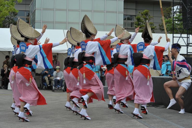 四国の祭り 2015 徳島文理大学連 / 阿波踊り_d0246136_14551917.jpg