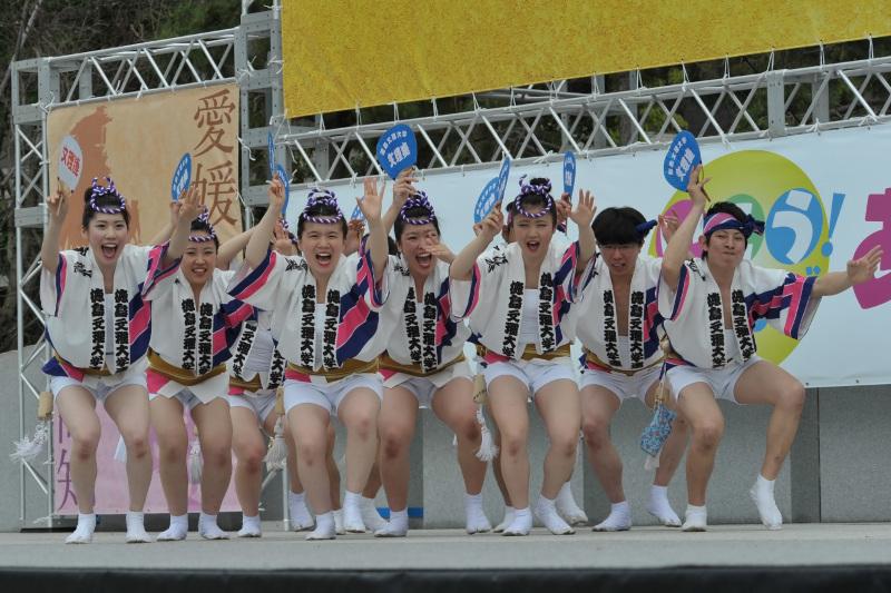 四国の祭り 2015 徳島文理大学連 / 阿波踊り_d0246136_14553701.jpg