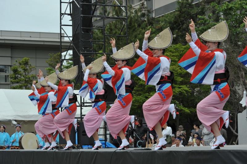 四国の祭り 2015 徳島文理大学連 / 阿波踊り_d0246136_14555293.jpg