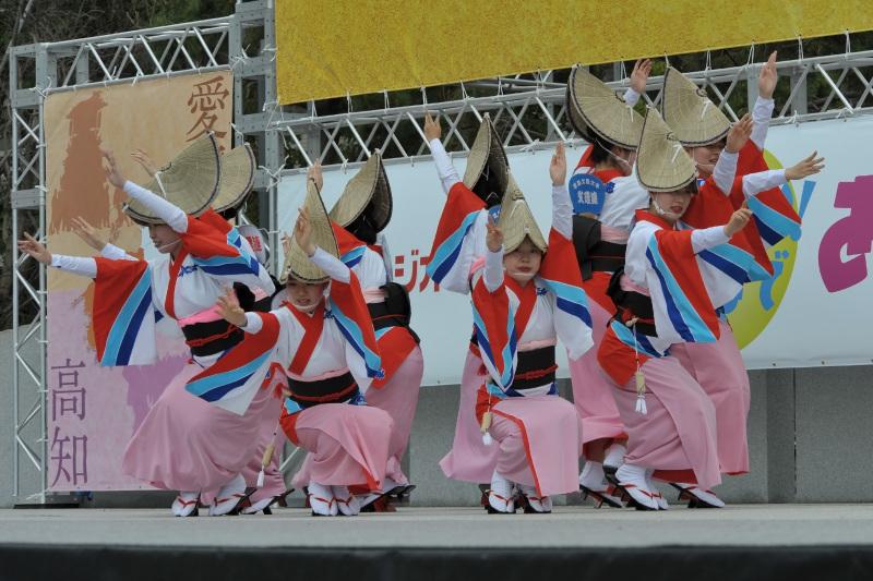 四国の祭り 2015 徳島文理大学連 / 阿波踊り_d0246136_14562112.jpg
