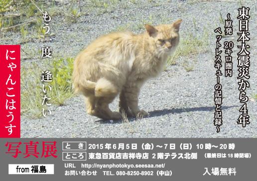 にゃんこはうす写真展in東京_c0194541_12463448.jpg